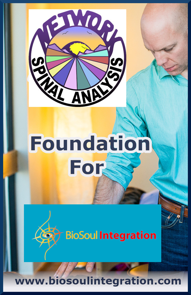 What Is Network Spinal Analysis, How Does It Work & How It Led To BioSoul Integration?