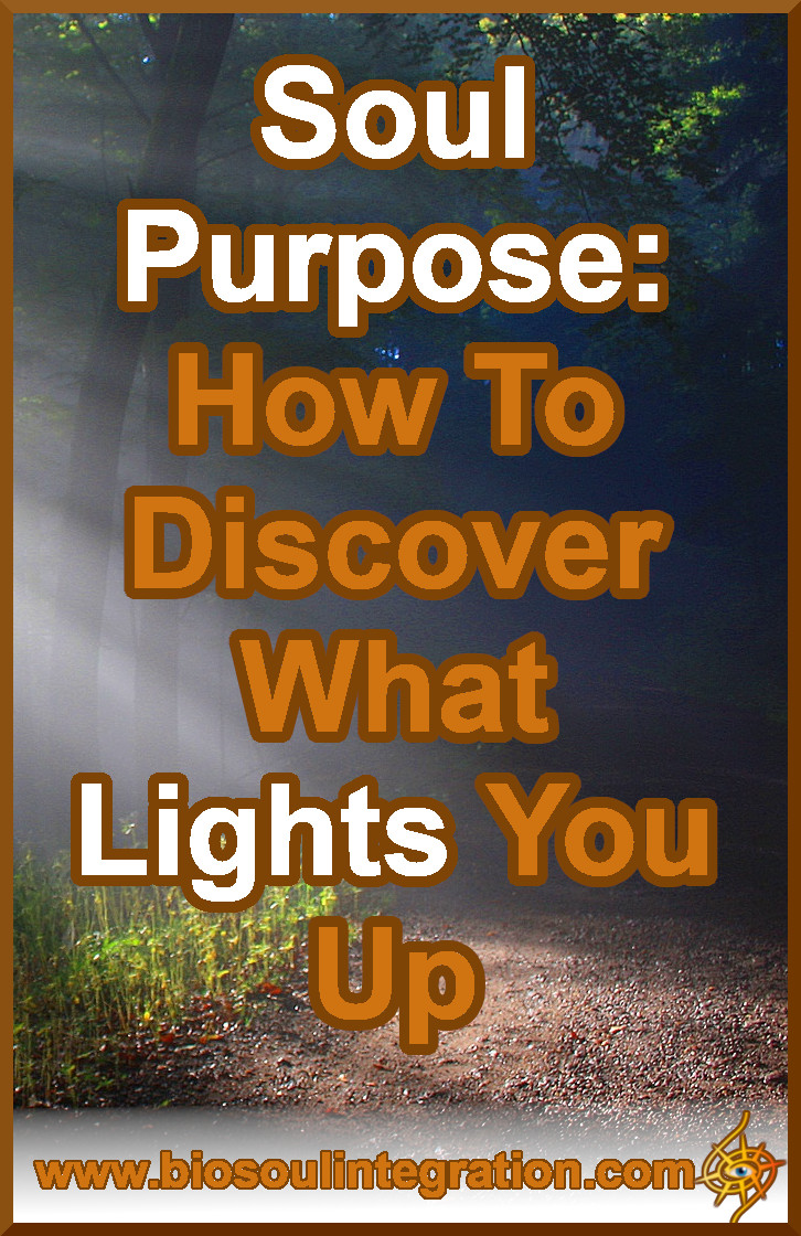 Soul Purpose: How to Discover What Lights You Up