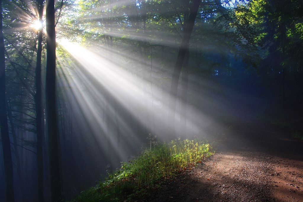 sun shining onto the path of soul's purpose